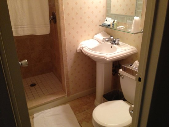 Palm Pavilion Inn : Updated bathroom in budget room.