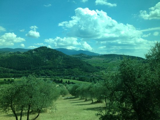 Accidental Tourist: Tuscany countryside to the villa