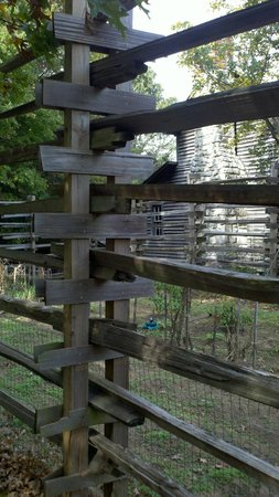 Burritt on the Mountain: Interesting deer fencing arouns garden