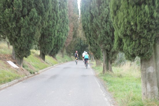 Tuscany Bike Tours : Bike Tour