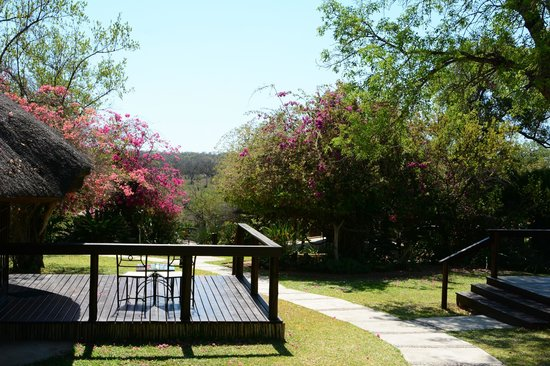 Elephant Plains Game Lodge : View from Rondoval