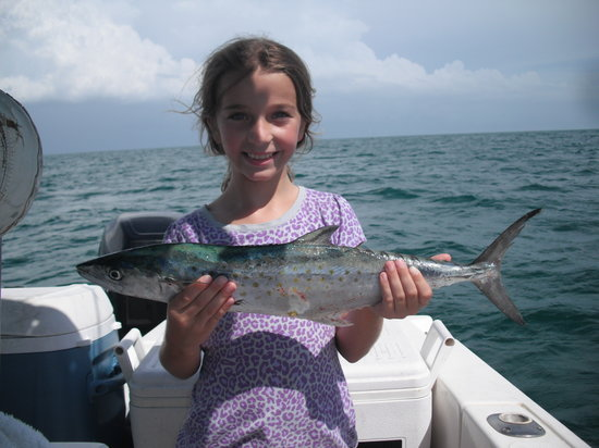 Deep sea fishing in naples fl picture of day star for Naples deep sea fishing