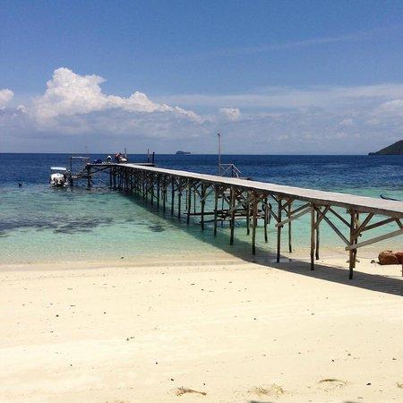 Raja Ampat Biodiversity Eco Resort: Jetty