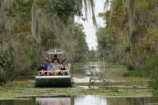 Airboat Adventures : Canal area