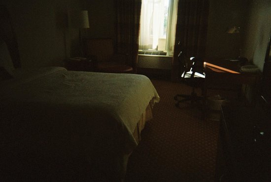 Hilton Garden Inn Jacksonville / Ponte Vedra : View of room
