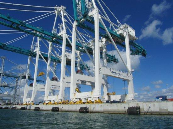 Thriller Miami Speedboat Adventures: cranes