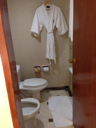 Sheraton Mexico City Maria Isabel Hotel: toilet/bath
