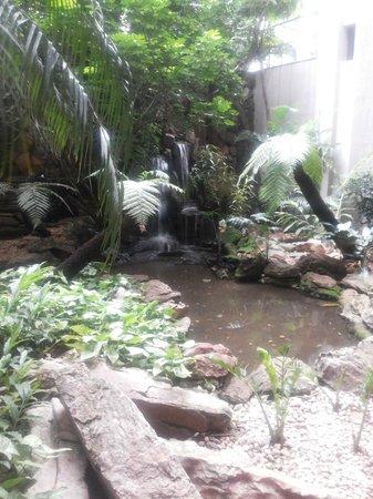 Windsor Plaza Brasília Hotel: Jardim do restaurante