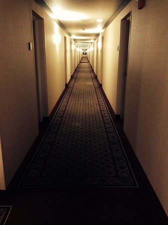 Extended Stay America - Orlando - Altamonte Springs: Long smelly  and dirty hallway to my room.