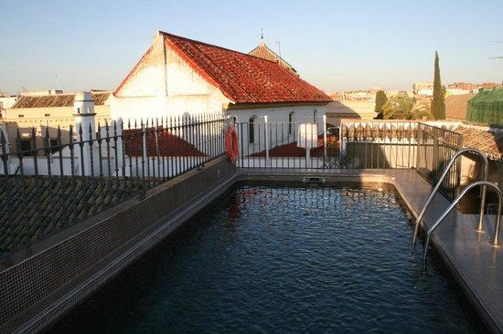 Hospes Las Casas del Rey de Baeza Sevilla : Piscina en la terraza superior