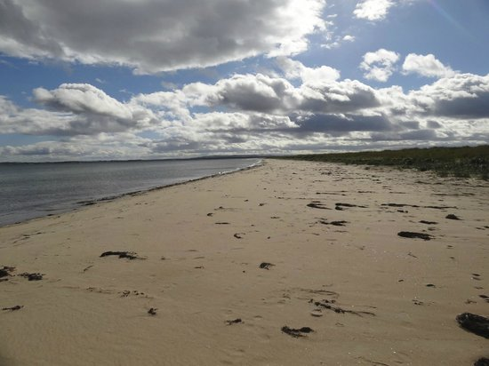 Sule Skerry Homestay B&B : Dornoch beach