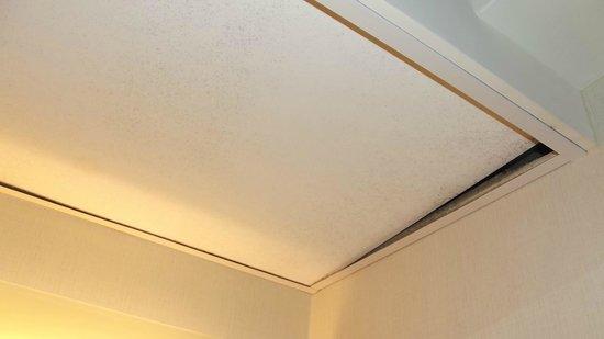 Hyatt Regency Greenville: Ceiling tile in bathroom again