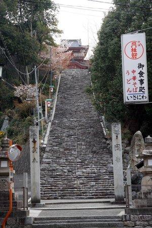 Isaniwa Shrine: 境内に向かう階段です。参道には桜がいっぱいでした。
