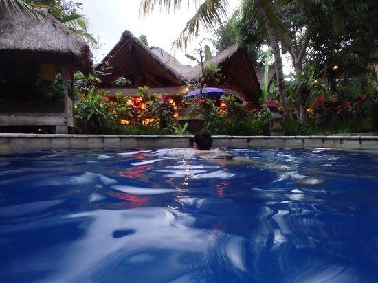Swasti Eco Cottages: Salt water pool