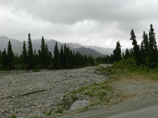 Park Road : Dry Riverbed 2