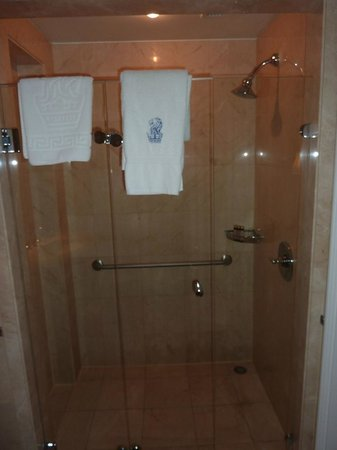 The Ritz-Carlton, Santiago : Disabled room - shower