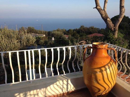 Il Giardino dell'Arte: View from terrace