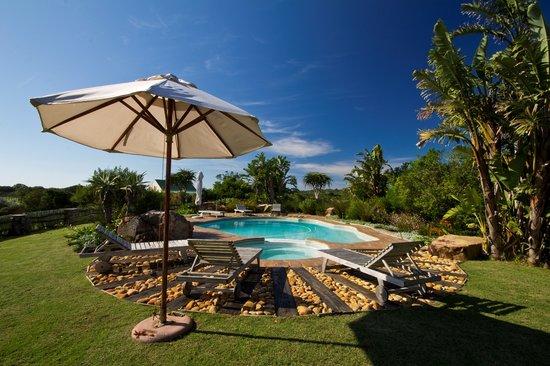Dune Ridge Country House: Pool Area