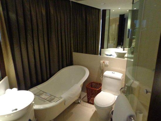 Grand Trustel Purple Mountain Hotel: bathroom