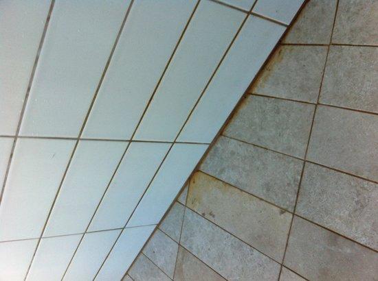 Ascott Park Place Dubai : Mouldy baths