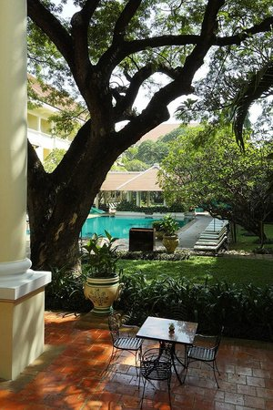 Raffles Hotel Le Royal: Old tree and pool