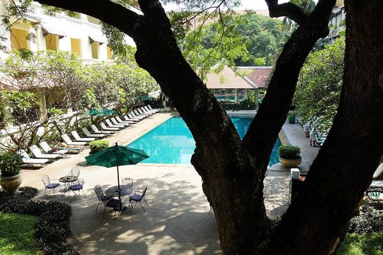 Raffles Hotel Le Royal: Loved the old tree