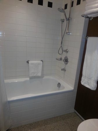 Hilton Amsterdam: Hope I never die slipping and banging my head on a hotel shower over bath!