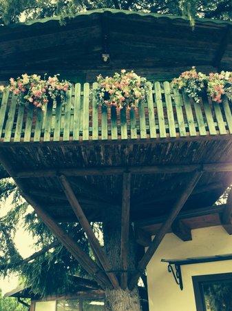 Ca' dell'Orto: Casa sull albero