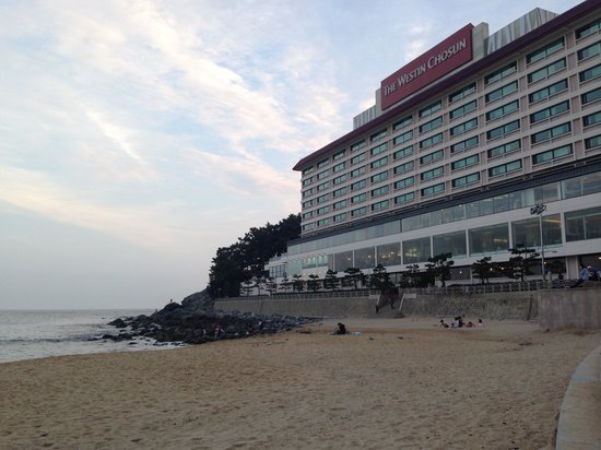 The Westin Chosun Busan : Westin Hotel exterior