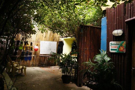 Blue Mango Inn: 가든