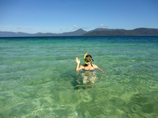 Fitzroy Island Resort: scuba diving