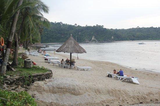 Coco Beach Island Resort : Beach