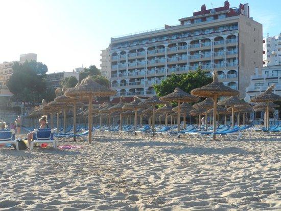 Alua Sun Torrenova: Palmanova or Magaluf beach can't remember
