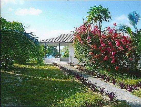 Sandy Beach Resort: Weg zu einem Fale