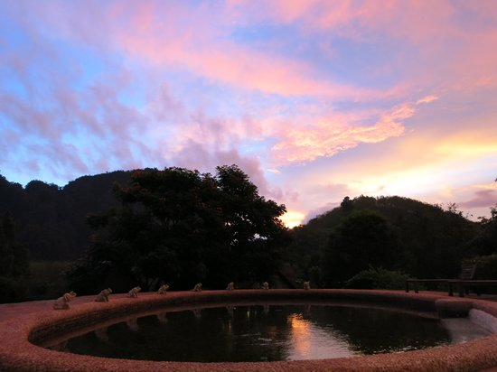 The Cliff & River Jungle Resort : Sunset at the hotel pool