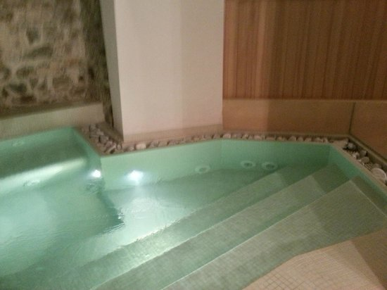 Hotel Terme Alessandra Gonzaga SPA: spa