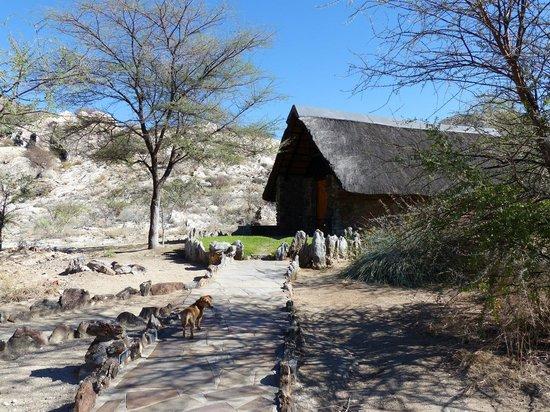 Etusis Lodge: Bungalow Klippspringer