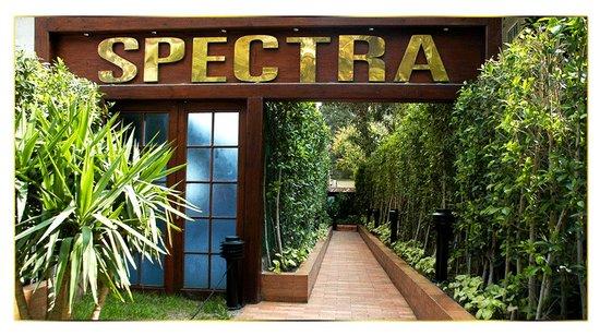 Spectra Restaurant & Cafe : Spectra Maadi