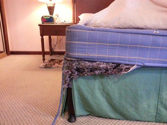 Macdonald Holyrood Hotel : MacDonald's Luxury Bed