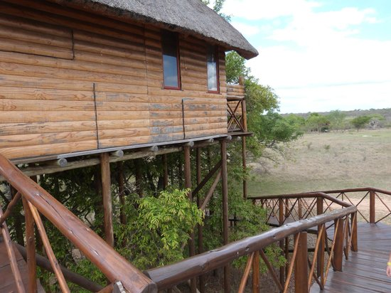 Pezulu Tree House Game Lodge : montain view dalla rampa