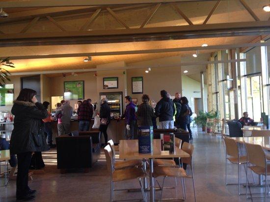 The Pavilion Cafe Avenham Park