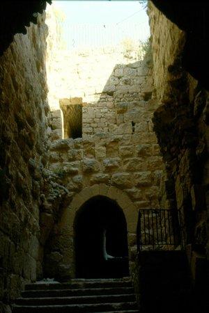 Ajlun Castle (Qala'at ar-Rabad) : porta
