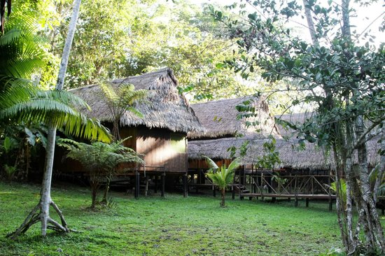 Maniti Camp Expeditions: Bungalows at Maniti Eco-Lodge