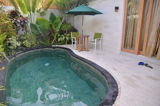The Widyas Luxury Villas: Our villa private pool