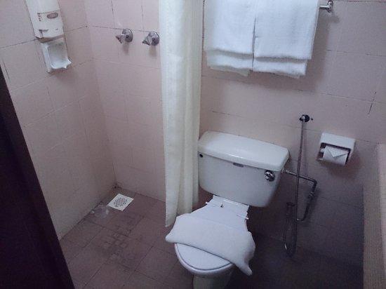 CherryLoft Resorts: dirty toilet
