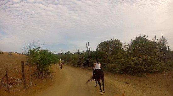 Rancho Washikemba: Kunuku tocht