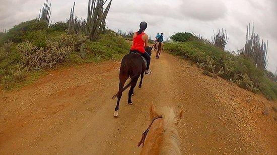 Rancho Washikemba: Lagoen tocht