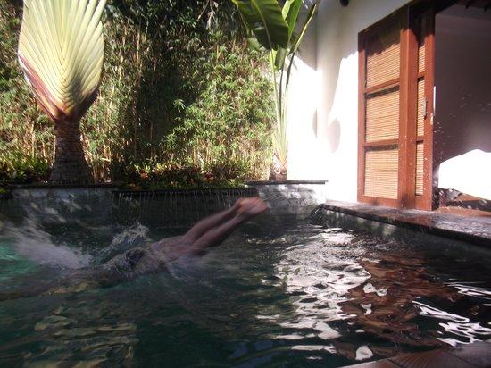 Aleesha Villas: love the pool!
