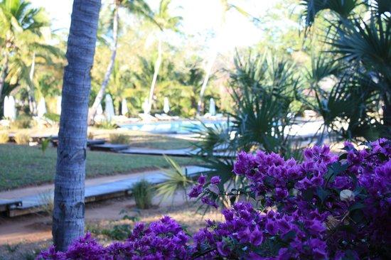 Anjajavy L'Hotel : garden