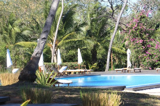 Anjajavy L'Hotel: Garden and pool area